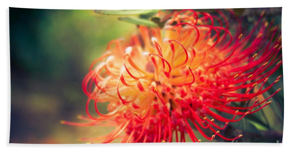 Leucospermum Bath Sheet featuring the photograph Resolution by Sharon Mau
