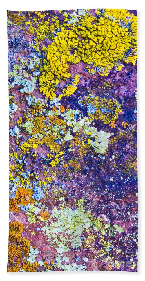 Lichen Abstract Hand Towel featuring the photograph Lichen Abstract by Mae Wertz