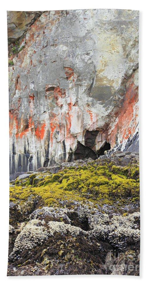 Lichen Bath Sheet featuring the photograph Lichen On Sea Beach Rock by Lee Serenethos