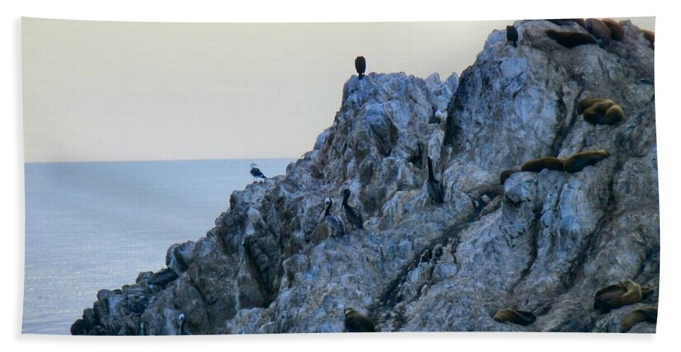 Art Hand Towel featuring the photograph Life On The Rocks by T Cook