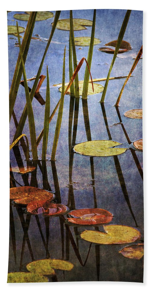 Lily Pad Hand Towel featuring the photograph Light And Shadow by Dale Kincaid