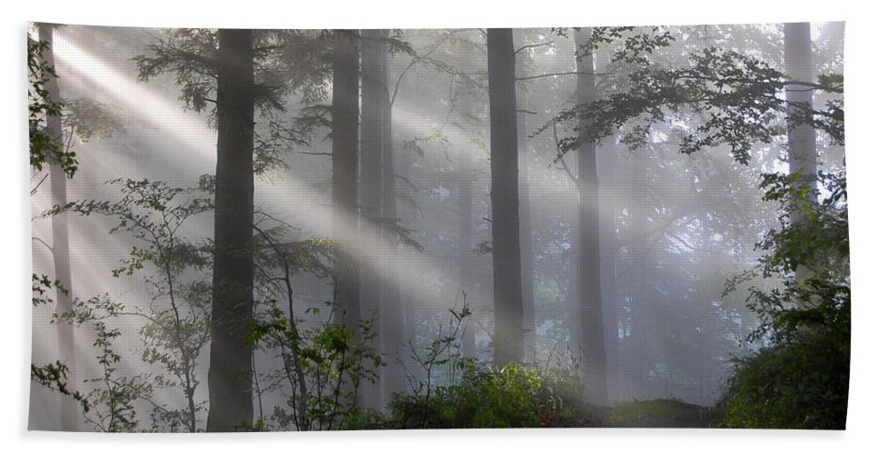 Lightbeams Hand Towel featuring the photograph Lightbeams by Ingrid Smith-Johnsen