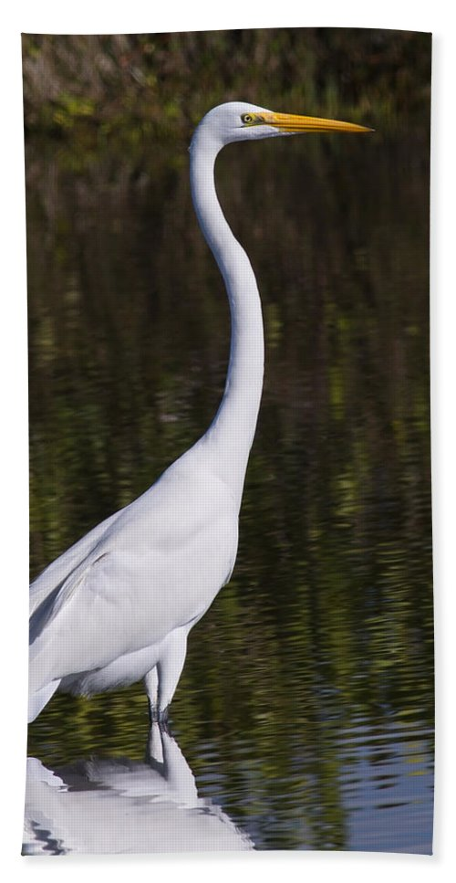 Birds Bath Sheet featuring the photograph Like A Great Egret Monument by John M Bailey