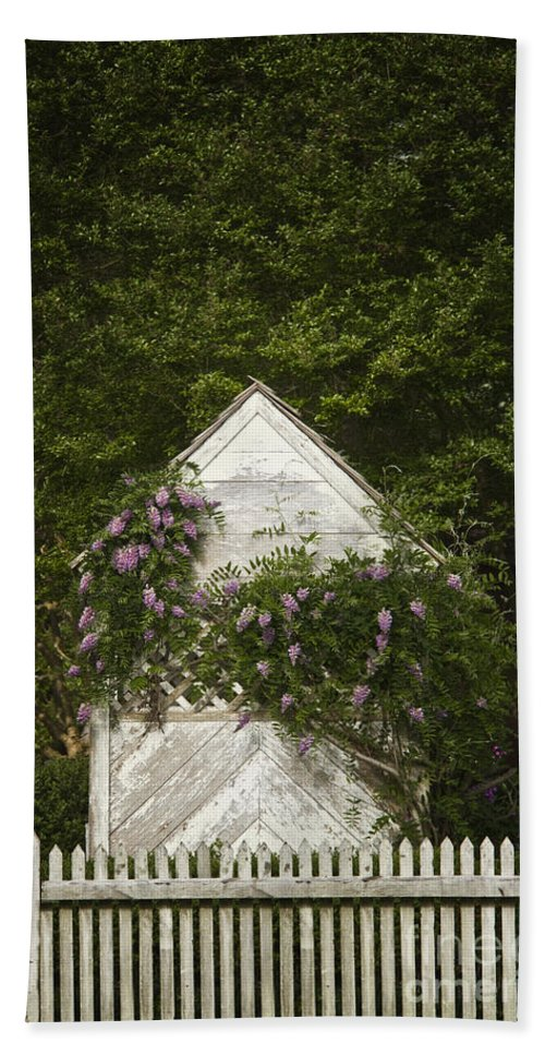 Pretty Hand Towel featuring the photograph Lilacs by Margie Hurwich