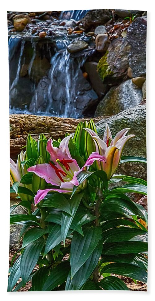 Lily Hand Towel featuring the photograph Lilies Of The Falls by John Haldane