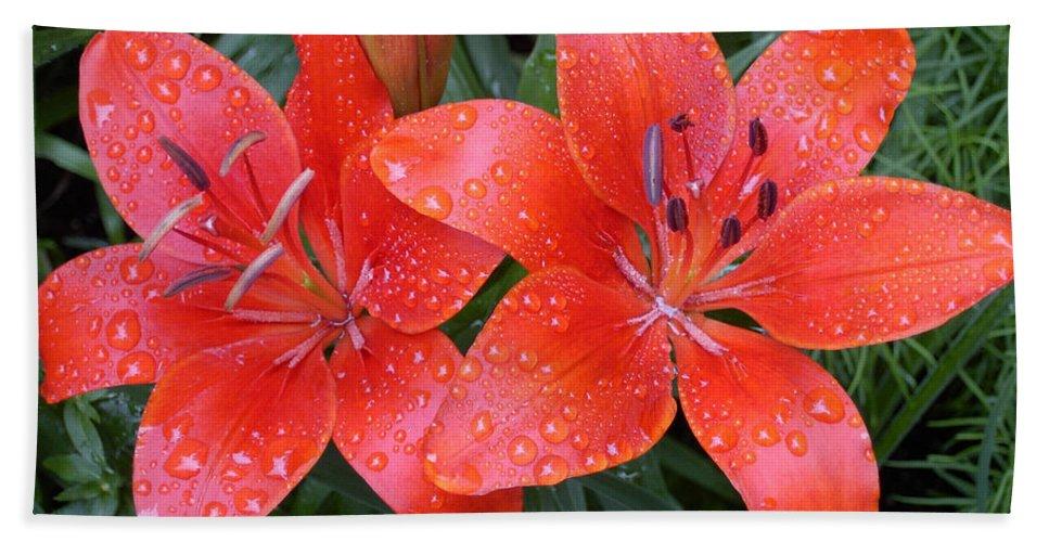 Lily Duet After The Rain Bath Sheet featuring the photograph Lily Duet After The Rain by Denyse Duhaime