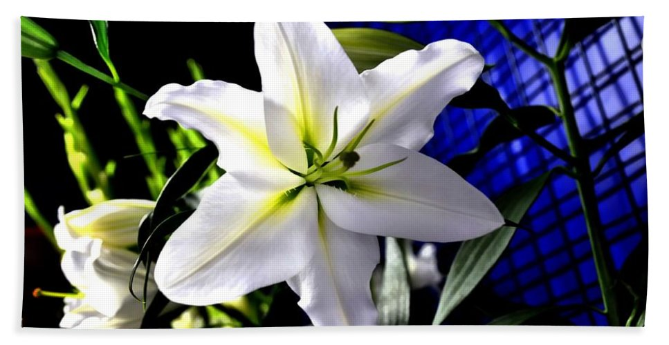 Flower Hand Towel featuring the photograph Lily by FL collection