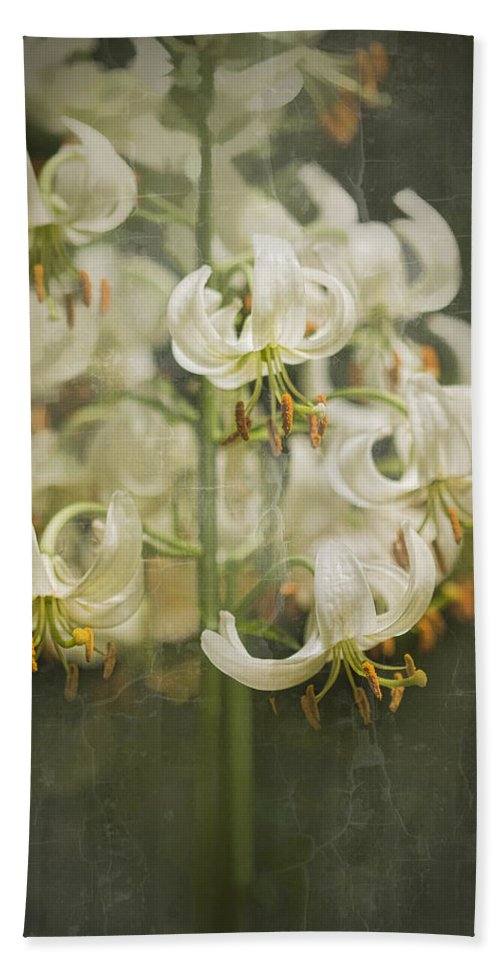 Lily Bath Sheet featuring the photograph Lily My Love by Marilyn Cornwell
