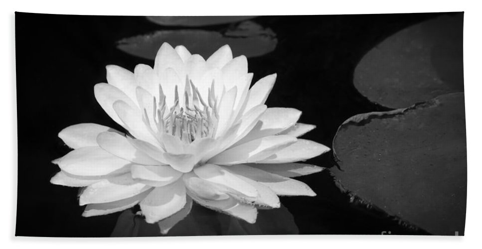 Lake Hand Towel featuring the photograph Lily On The Water by Lori Dobbs