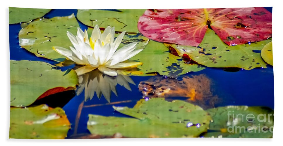 Lily Bath Towel featuring the photograph Lily by Optical Playground By MP Ray