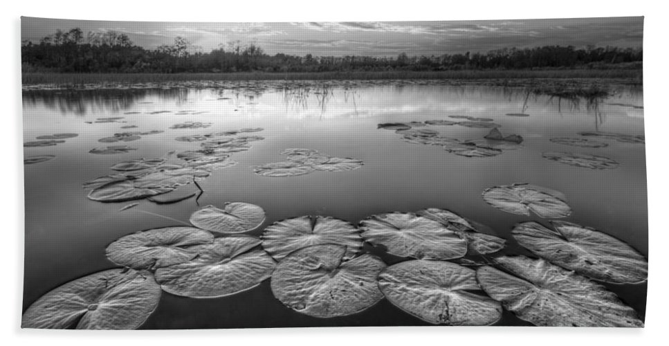 Clouds Bath Sheet featuring the photograph Lily Pads In The Glades Black And White by Debra and Dave Vanderlaan