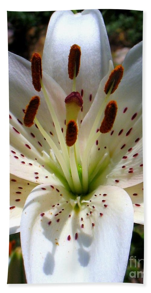 Lily Hand Towel featuring the photograph Lily by Patti Whitten