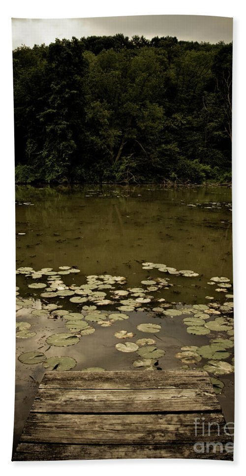 Allegheny County Hand Towel featuring the photograph Lilypads At The Dock by Amy Cicconi