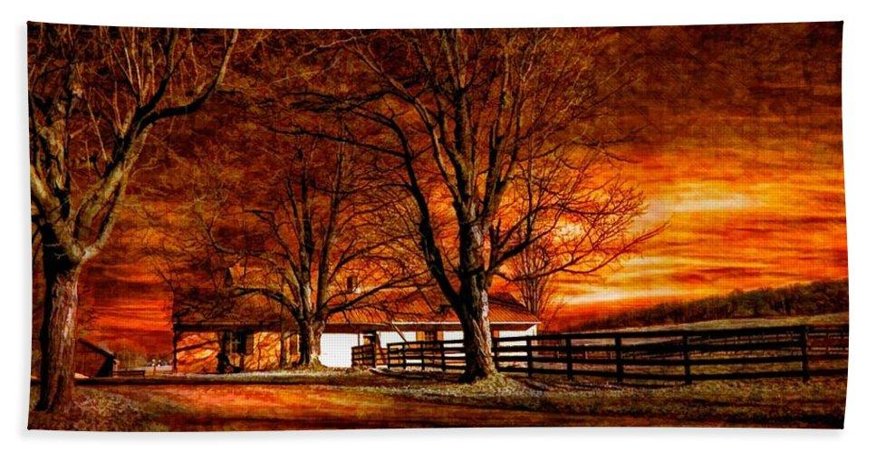 Farm Hand Towel featuring the photograph Limbo II by Steve Harrington