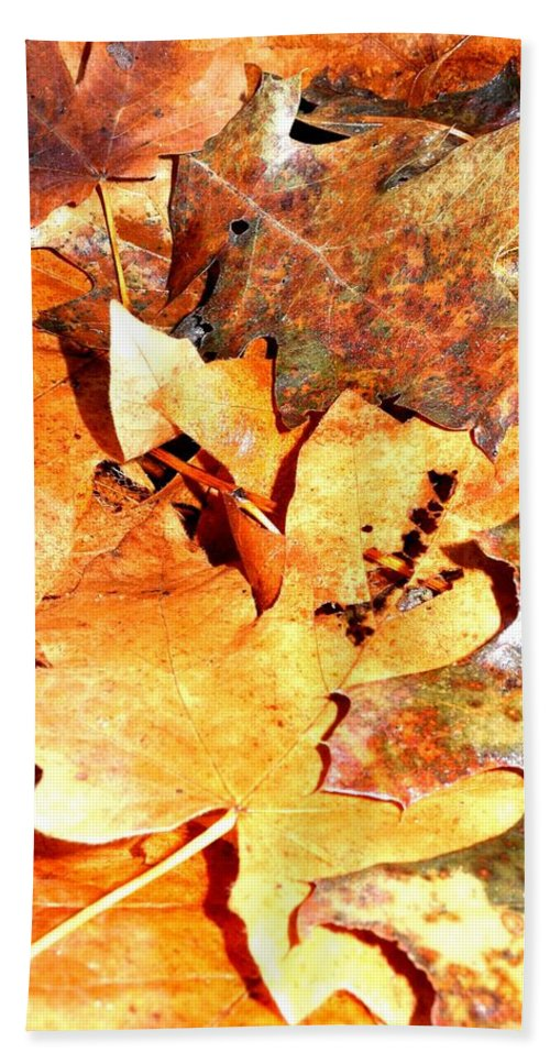 Fall Hand Towel featuring the photograph Lines Of Fall by Sue McElligott
