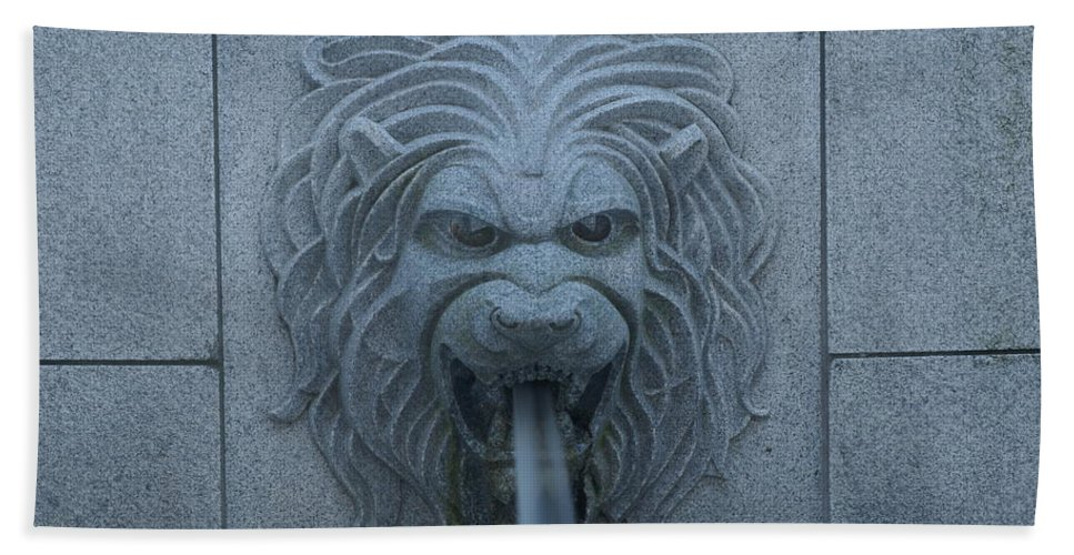 State Hand Towel featuring the photograph Lion Head by Rob Luzier