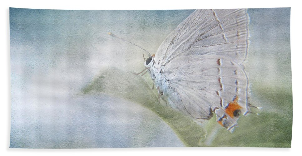 Butterfly Hand Towel featuring the photograph Little Grey Hairstreak by David and Carol Kelly