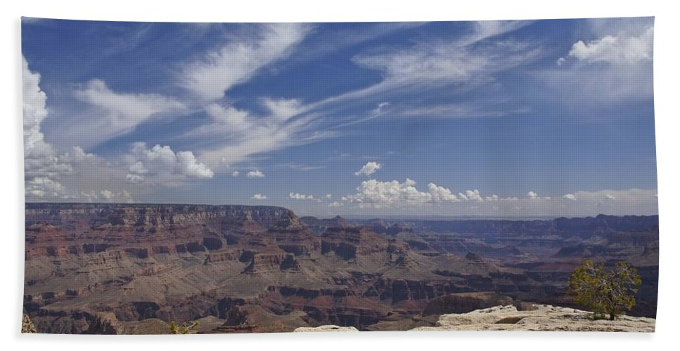 Pine Tree Hand Towel featuring the photograph Little Tree...grand Canyon by Brian Kamprath