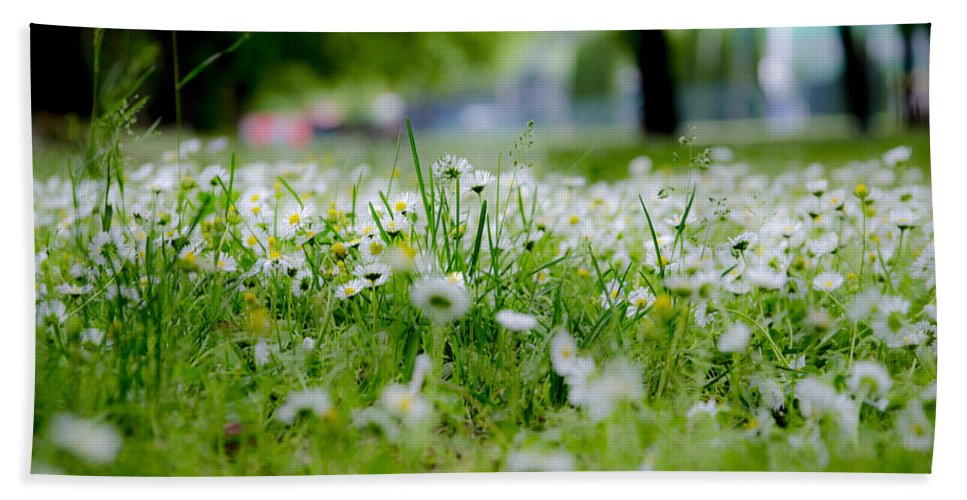 There Is Life Hand Towel featuring the photograph Little White Flowers II by Sotiris Filippou
