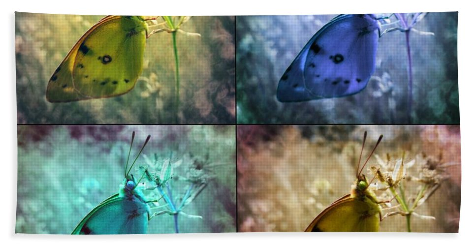 Butterfly Hand Towel featuring the photograph Lives Of A Butterfly by Marianna Mills