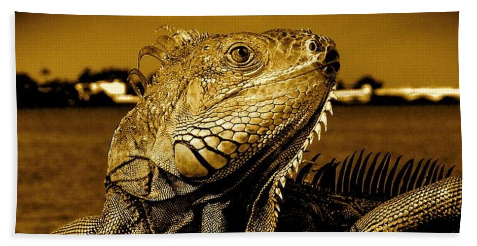 Lizard Print Bath Towel featuring the photograph Lizard Sunbathing In Miami II by Monique's Fine Art