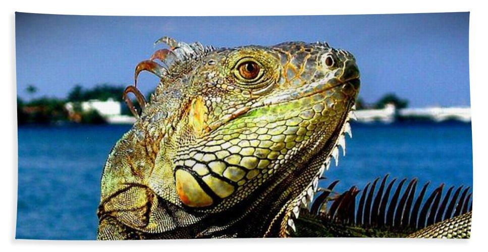Lizard Print Hand Towel featuring the photograph Lizard Sunbathing In Miami by Monique's Fine Art