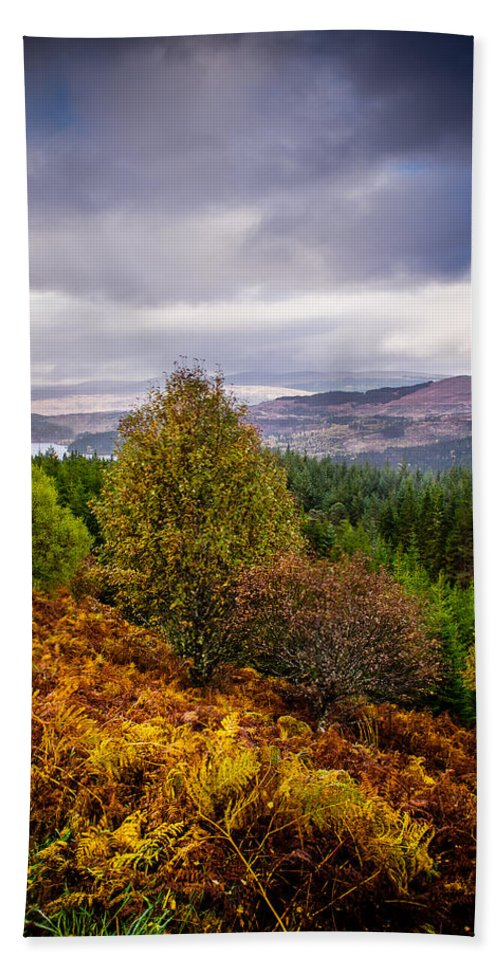 Bracken Hand Towel featuring the photograph Loch Loyne by Mark Llewellyn
