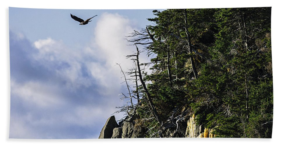 Bald Eagle Bath Sheet featuring the photograph Lofty Bald Eagle Surveys Maines Bold Coast by Marty Saccone