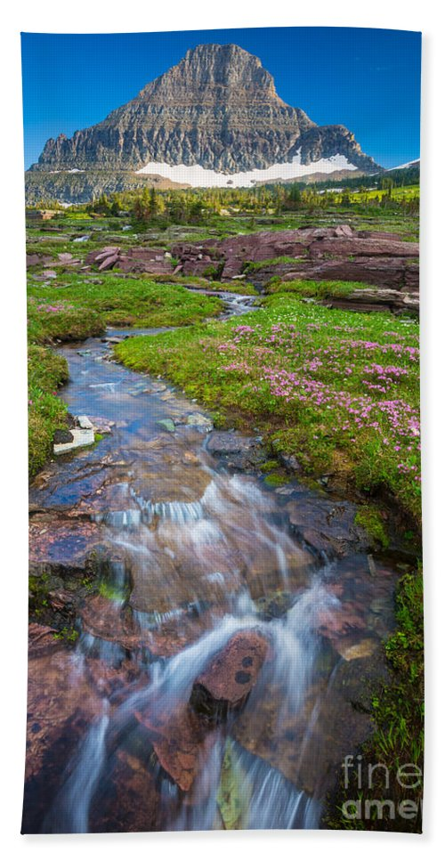 America Hand Towel featuring the photograph Logan Pass Creek by Inge Johnsson