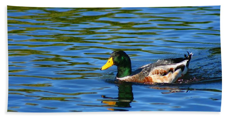 Duck Hand Towel featuring the photograph Lone Duck by Darren Burton