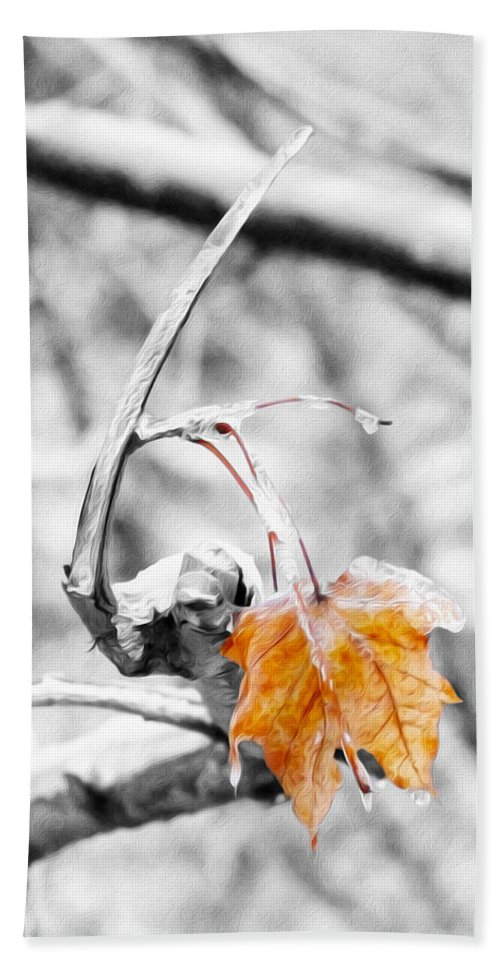 Leaf Hand Towel featuring the photograph Lone Leaf by Tracy Winter