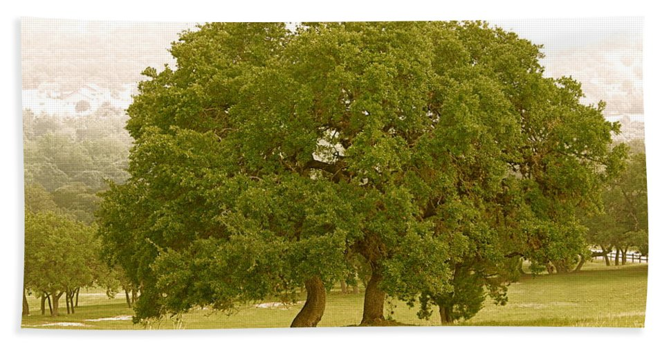 Live Hand Towel featuring the photograph Lone Oaks by Gary Richards