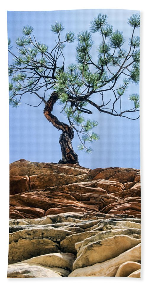Lone Pine Hand Towel featuring the photograph Lone Pine by Kelley King