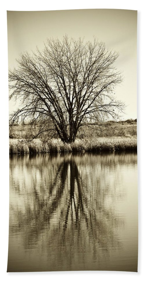 Lone Bath Sheet featuring the photograph Lone Tree by Marilyn Hunt