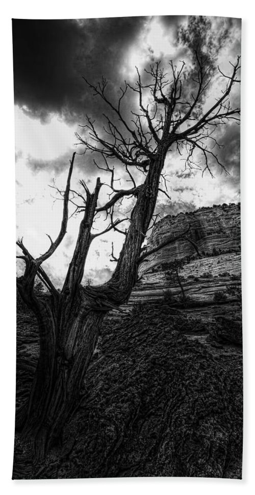 Zion National Park Bath Sheet featuring the photograph Lonely by Jonathan Davison