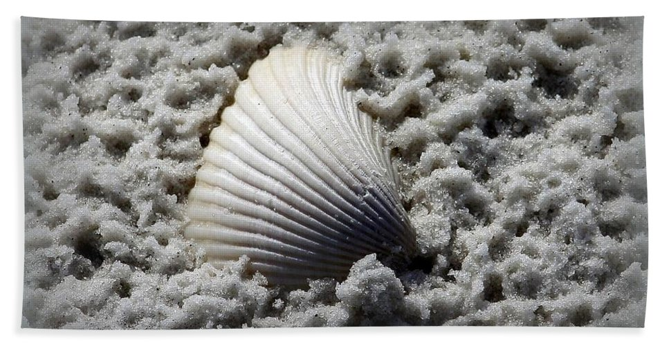 Seaside Hand Towel featuring the photograph Lonely Shell by Debra Forand