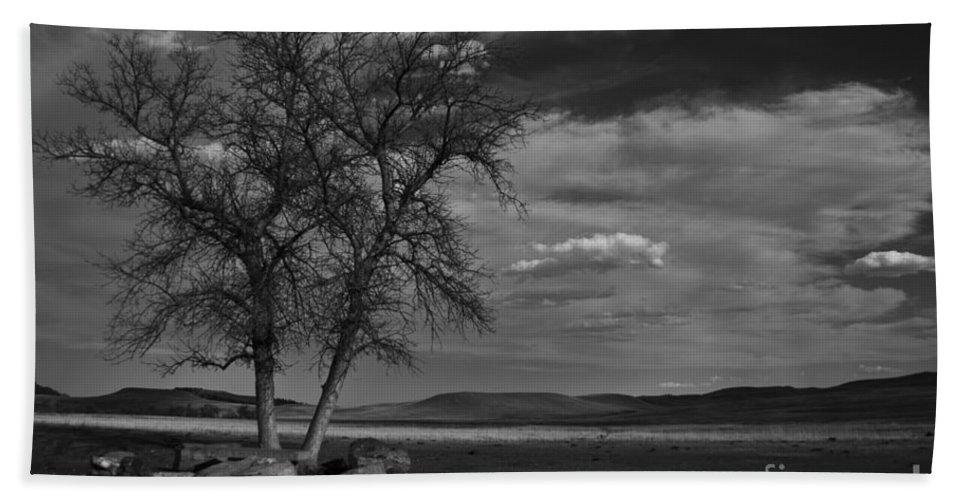 Tree Bath Sheet featuring the photograph Lonesome Tree by Steve Triplett