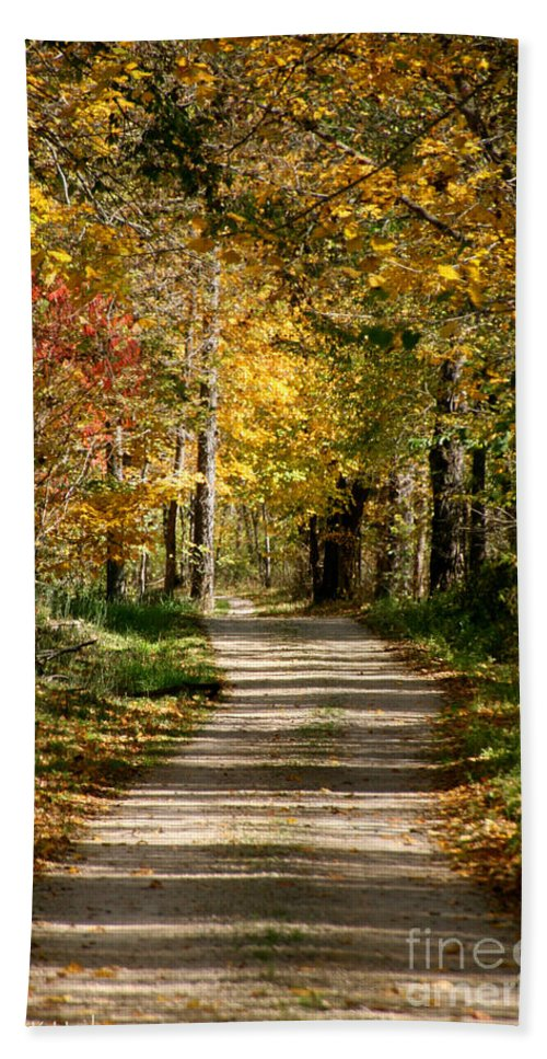 Horticulture Bath Sheet featuring the photograph Long Shadows by Susan Herber