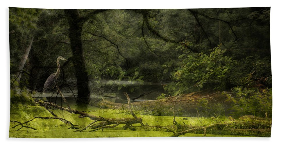 Ambience Bath Sheet featuring the photograph Looking For Food Merged Image by Thomas Woolworth