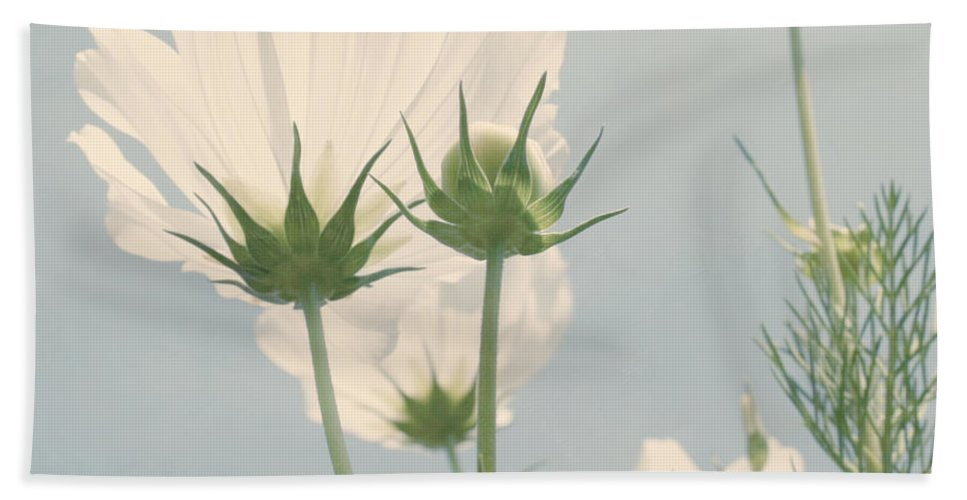 Flower Bath Sheet featuring the photograph Looking Up by Kim Hojnacki