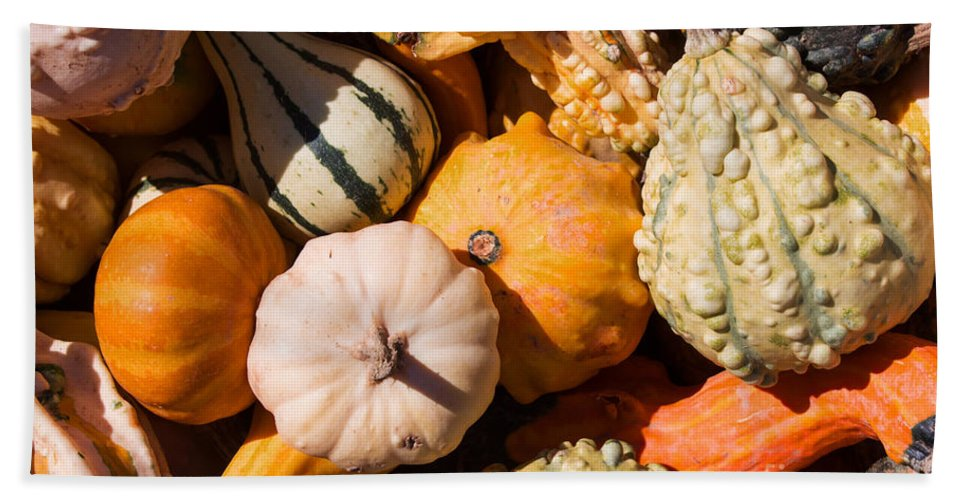 Gourd Bath Sheet featuring the photograph Lots Of Little Gourds by Barbara McMahon