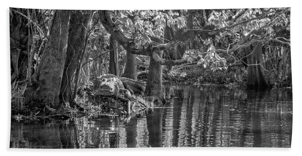 Gator Hand Towel featuring the photograph Louisiana Bayou - Bw by Steve Harrington