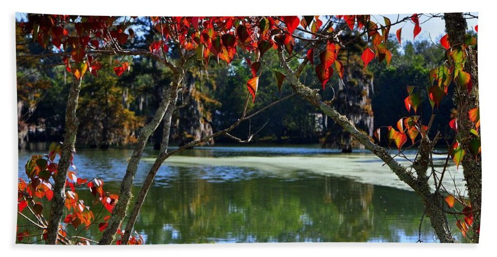Fall Bath Sheet featuring the photograph Louisiana Fall by Charlotte Schafer
