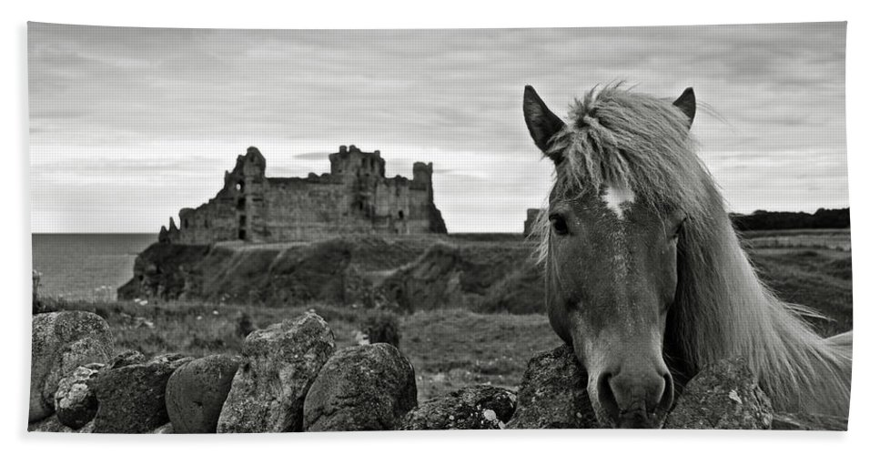 Tantallon Castle Bath Sheet featuring the photograph Lovely Horse And Tantallon Castle by RicardMN Photography