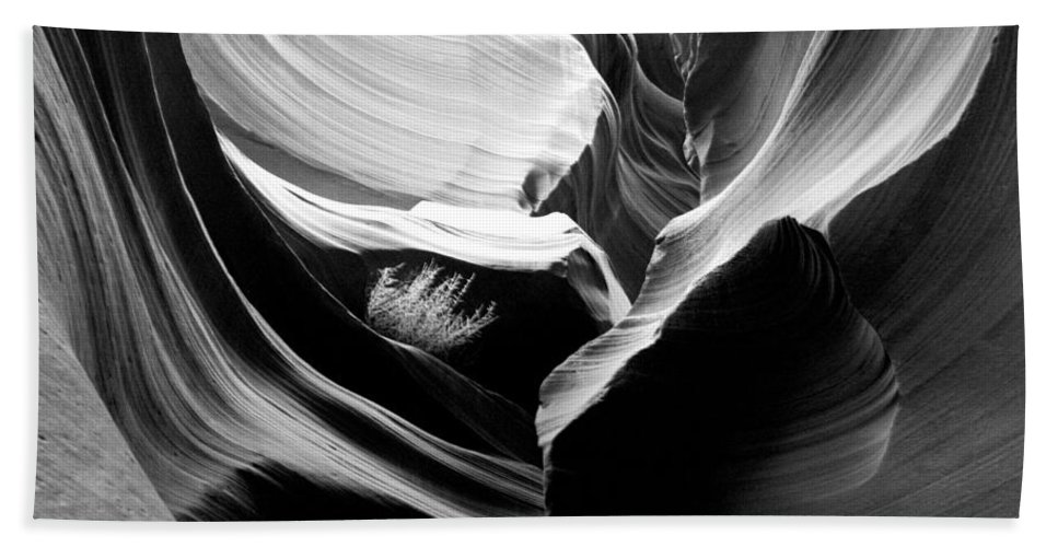 Lower Antelope Canyon Photograph In Black And White Hand Towel featuring the photograph Lower Antelope Canyon Shrub by Mae Wertz
