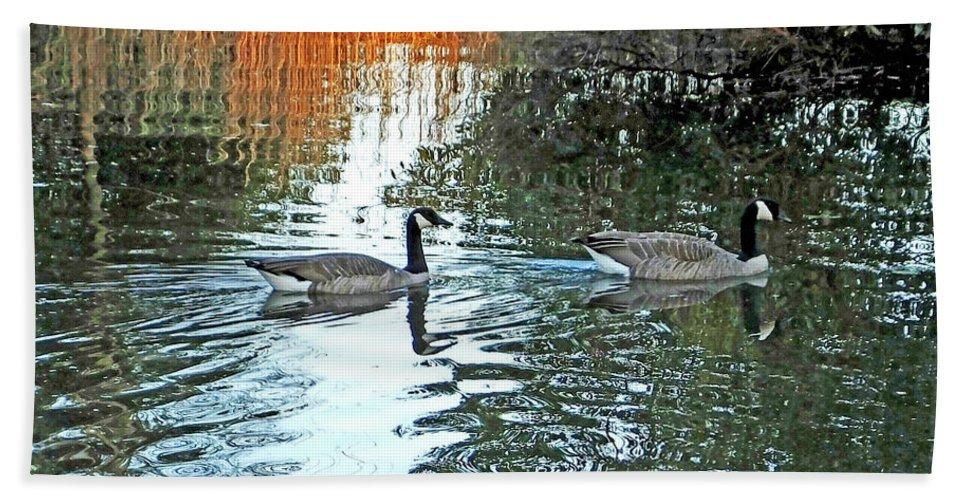 Canadian Geese Bath Sheet featuring the digital art Lsu Ag Centers Burden Center Baton Rouge Louisiana by Lizi Beard-Ward