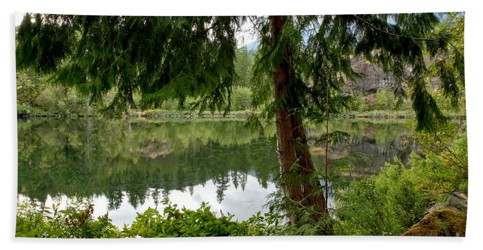 Starvation Lake Hand Towel featuring the photograph Lush Green At Starvation Lake by Adam Jewell