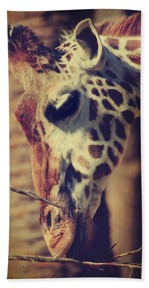 Giraffes Bath Sheet featuring the photograph Lunchtime Twigs by Laurie Search