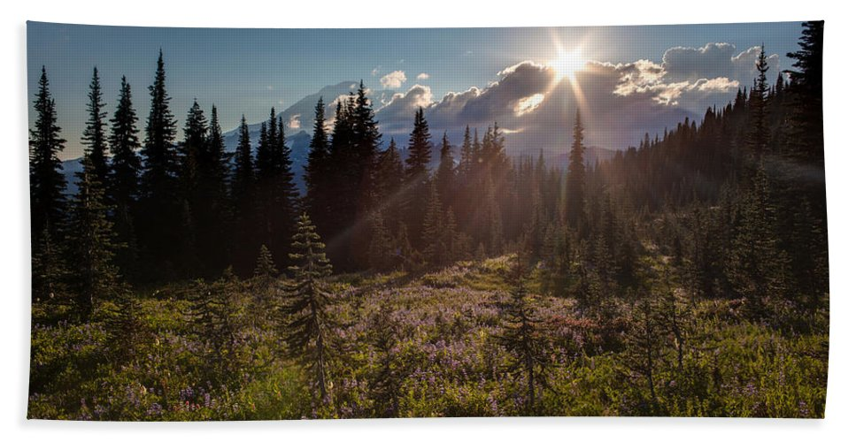 Rainier Hand Towel featuring the photograph Lupine Field Sunstar by Mike Reid