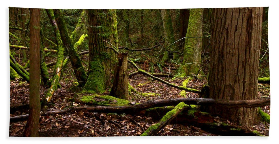 Forest Bath Sheet featuring the photograph Lush Green Forest by Mary Mikawoz